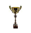 Golden trophy isolated on background vector