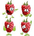 Raspberry cartoon vector