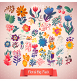 Flowers decorative set of doodle plants vector