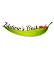 A natures best label with an ant vector