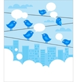 Social network background with blue birds vector