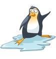 Cartoon character penguin vector