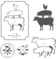Restaurant grill and barbecue menu design elements vector