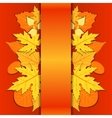 Lace paper background with autumn leaves vector