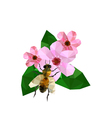 Beautiful origami cherry blossom with bee vector