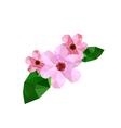 Beautiful origami cherry blossom vector