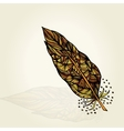 Decorative feathers vector