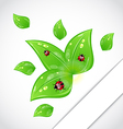 Leaves with ladybugs sticking out of the cut paper vector