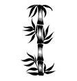 Decorative silhouette bamboo vector