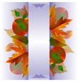 Lace background with autumn leaves vector