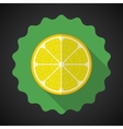 Lemon orange fruit flat icon with long shadow vector