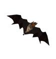 Origami flying fruit bat vector