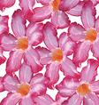 Desert rose pink flower seamless pattern sketch on vector