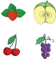 Strawberrycutting applecherriesgrapes hand drawn vector