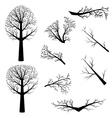 Bare trees silhouette vector