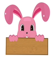 Rabbit easter with wood sign vector