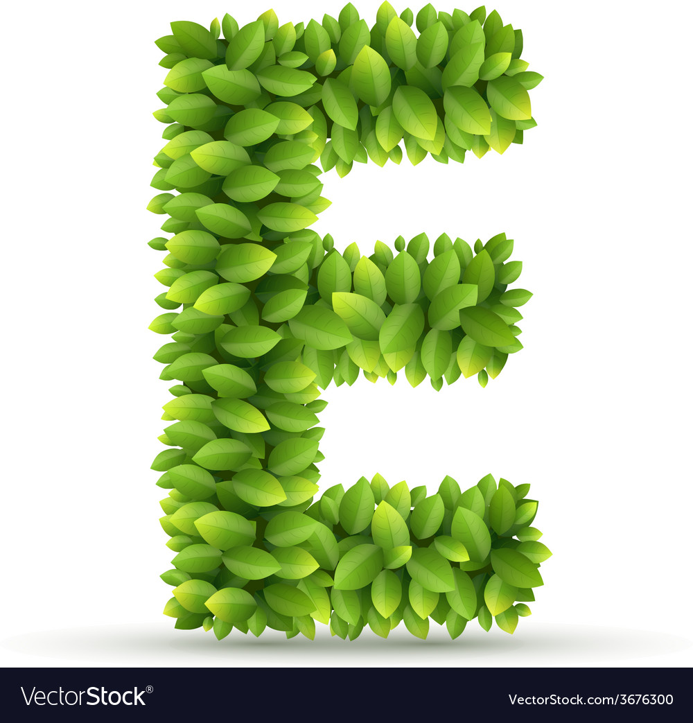 Letter e alphabet of green leaves vector | Price: 1 Credit (USD $1)