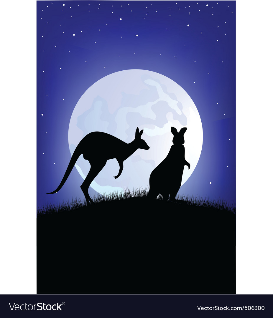Two kangaroo vector | Price: 1 Credit (USD $1)