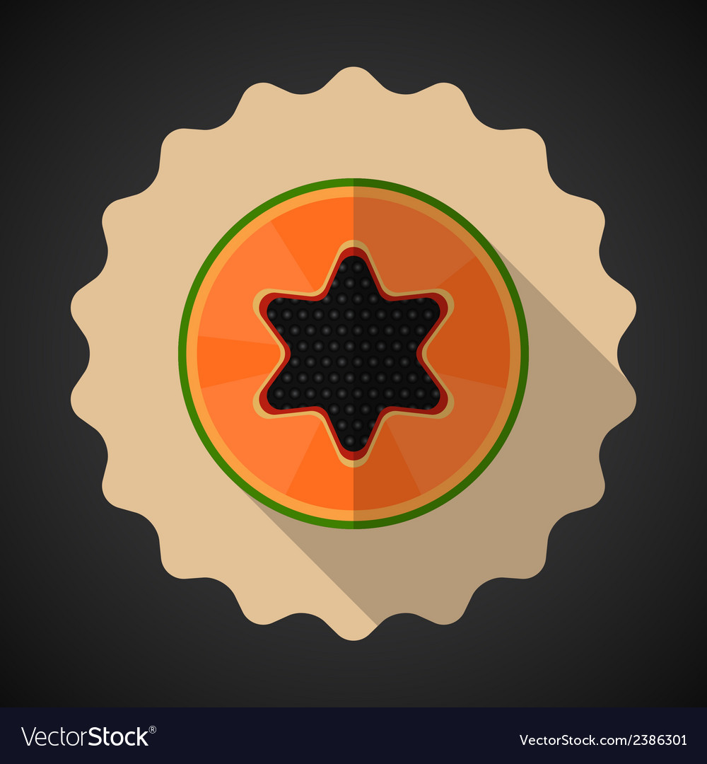 Papaya fruit flat icon with long shadow vector | Price: 1 Credit (USD $1)