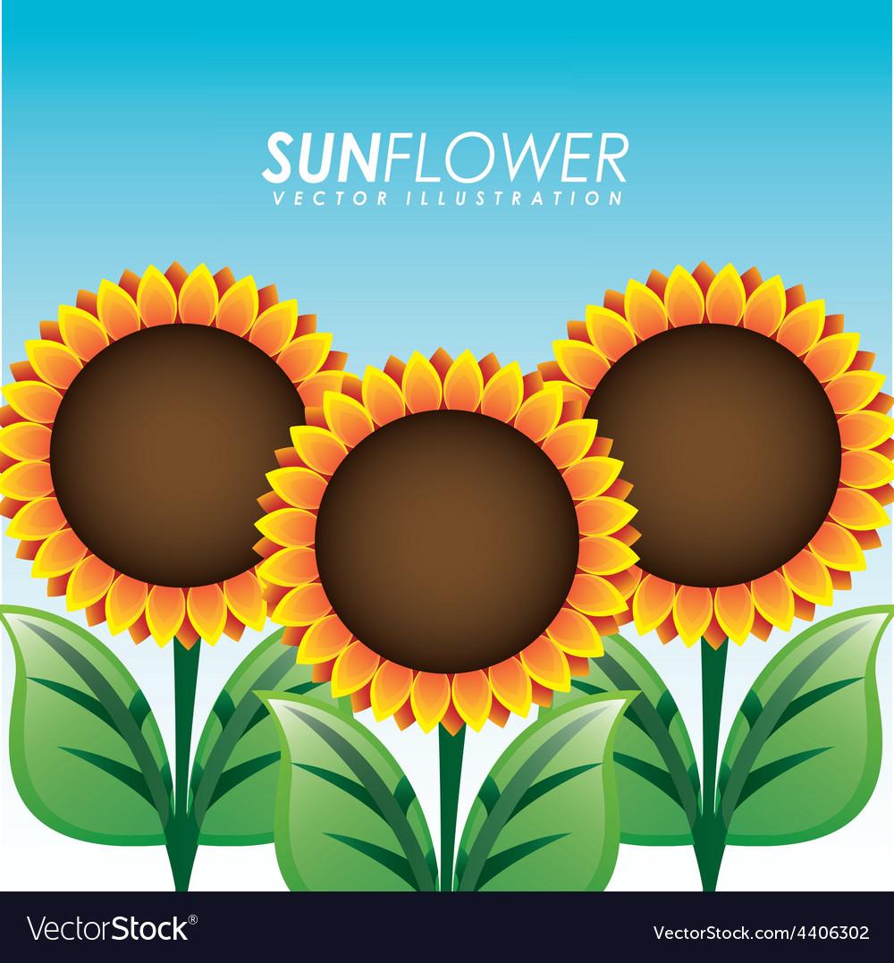 Sunflower garden vector   Price: 1 Credit (USD $1)