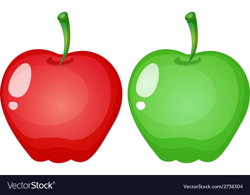 Apples vector | Price: 1 Credit (USD $1)