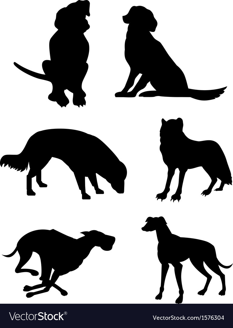 Canine silhouettes vector | Price: 1 Credit (USD $1)