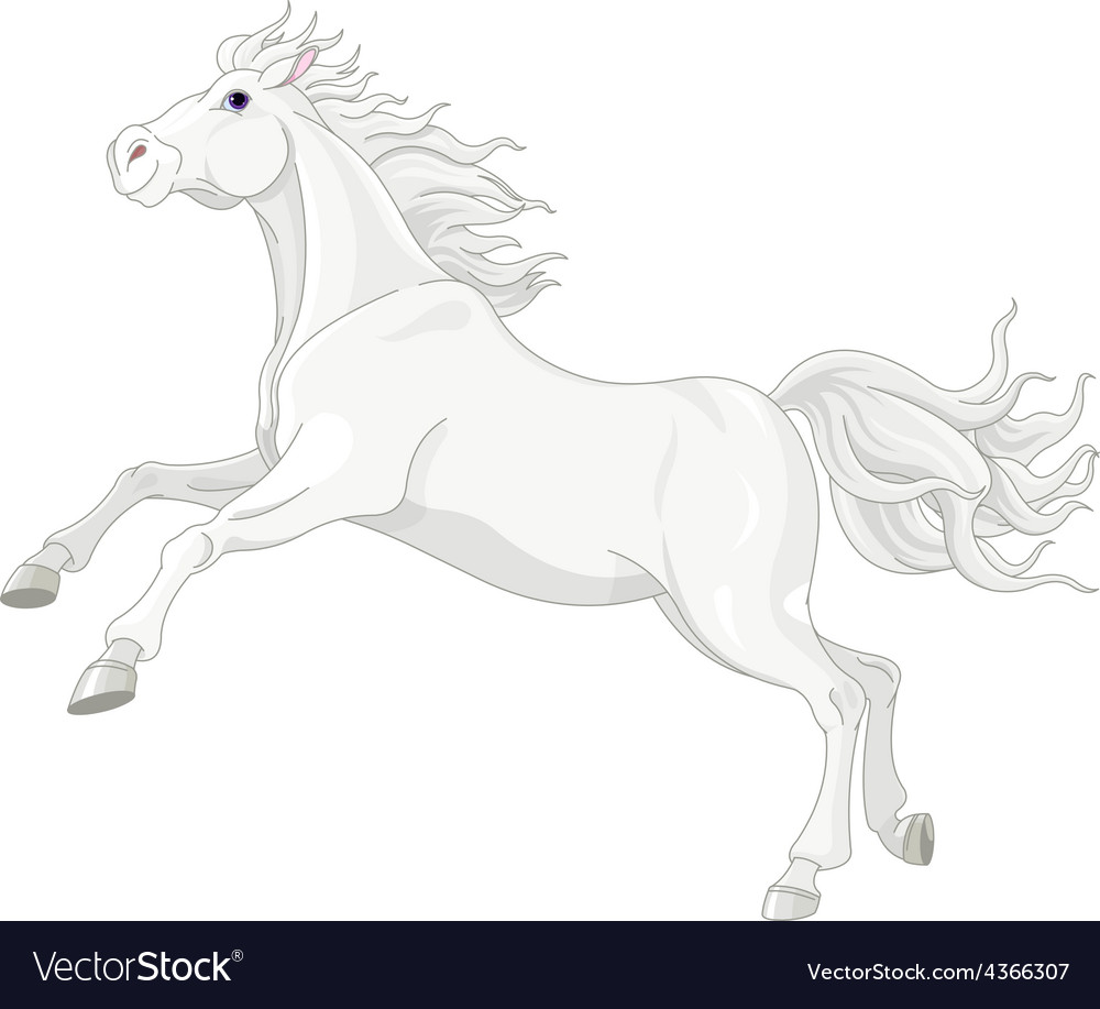 Beautiful white horse vector