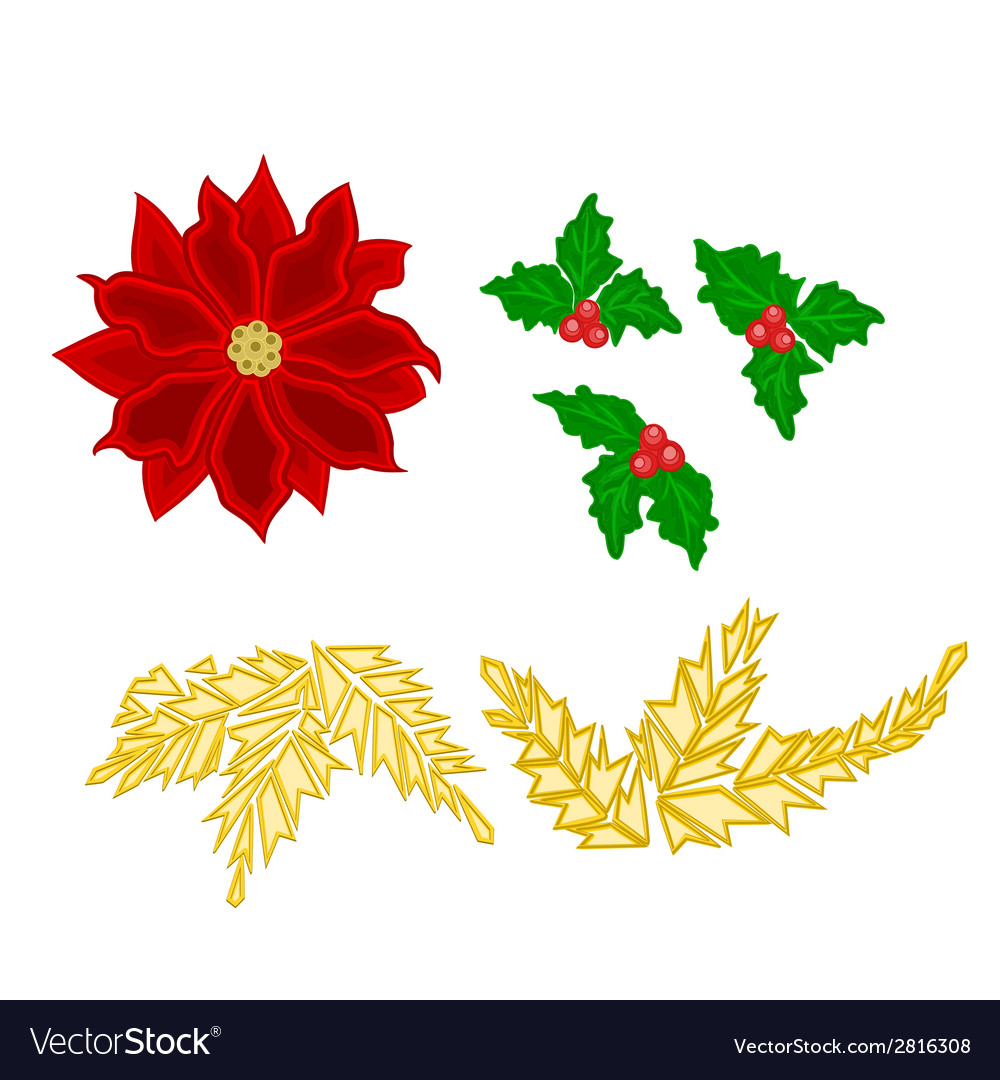 Christmas decoration poinsettia holly and gold lea vector | Price: 1 Credit (USD $1)