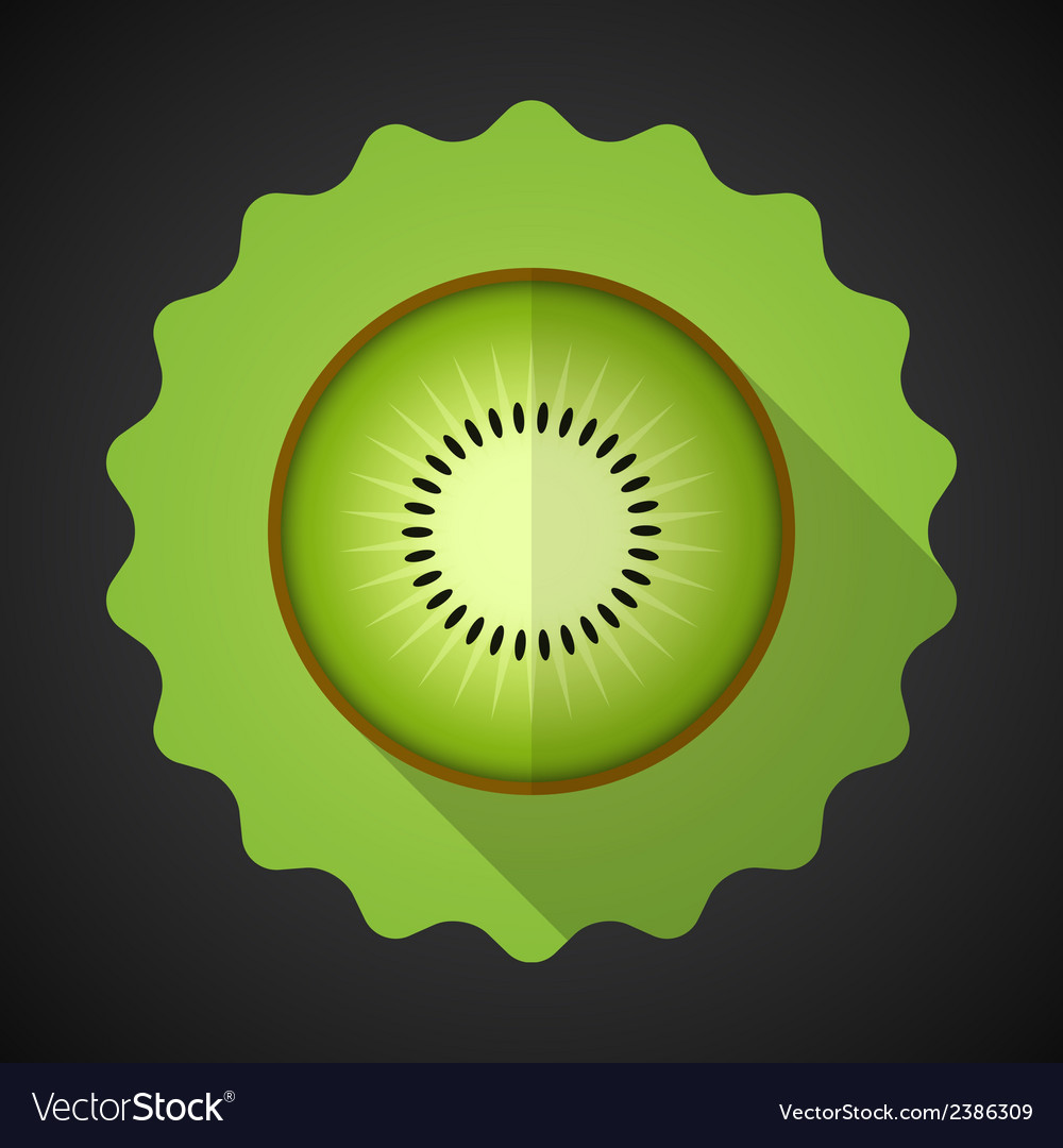 Kiwi fruit flat icon with long shadow vector | Price: 1 Credit (USD $1)