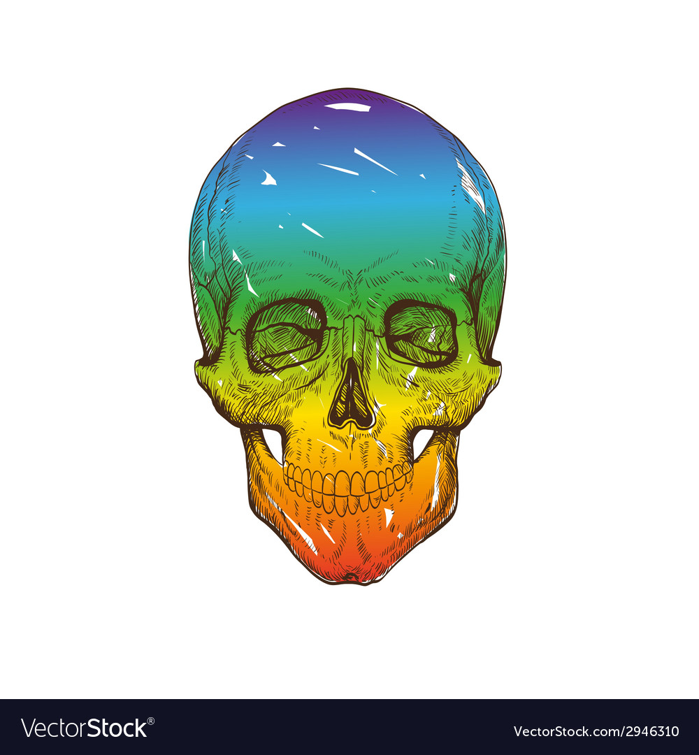 Skull drawing isolated vector | Price: 1 Credit (USD $1)