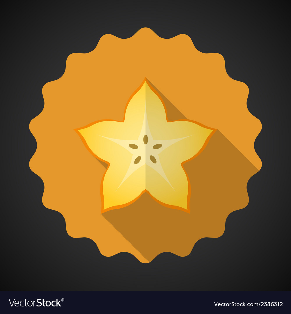 Star fruit flat icon with long shadow vector | Price: 1 Credit (USD $1)