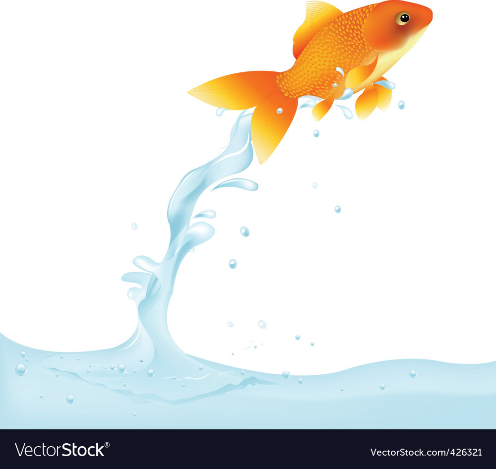 Goldfish leaping out of water vector | Price: 1 Credit (USD $1)