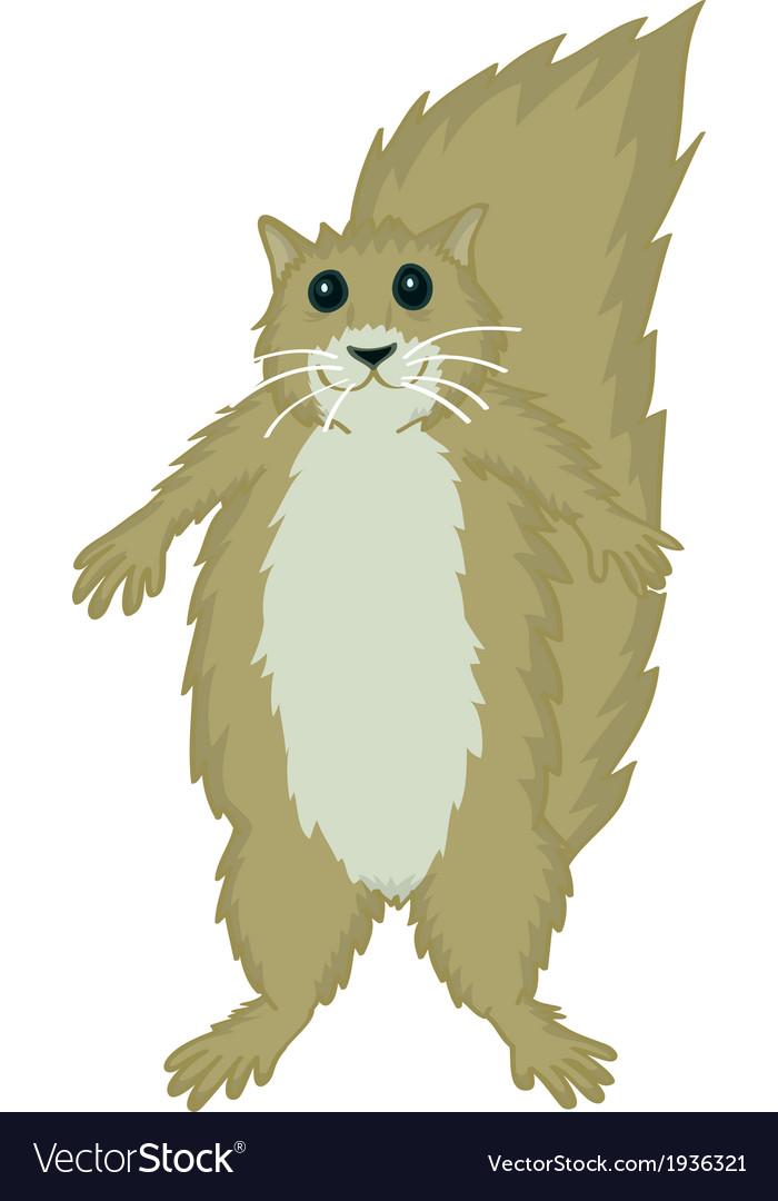 Squirrel cute vector | Price: 1 Credit (USD $1)