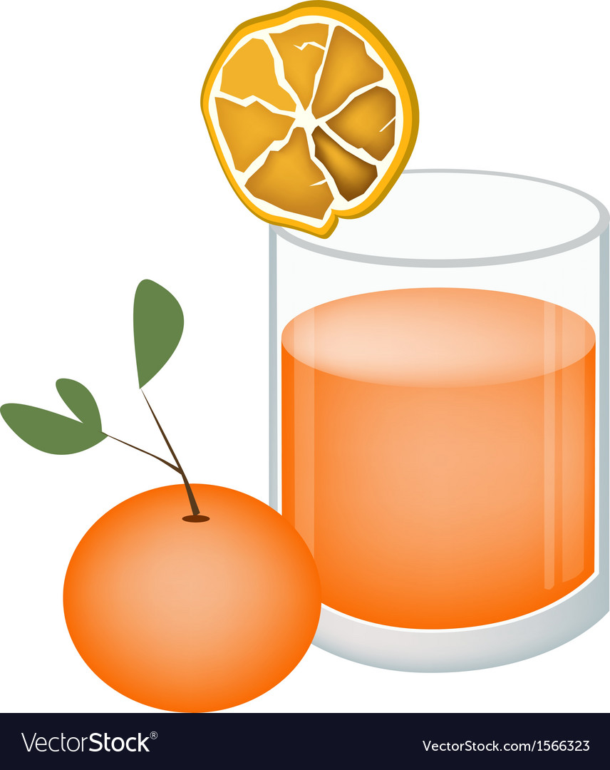 Glass of orange juice and oranges fruit vector | Price: 1 Credit (USD $1)