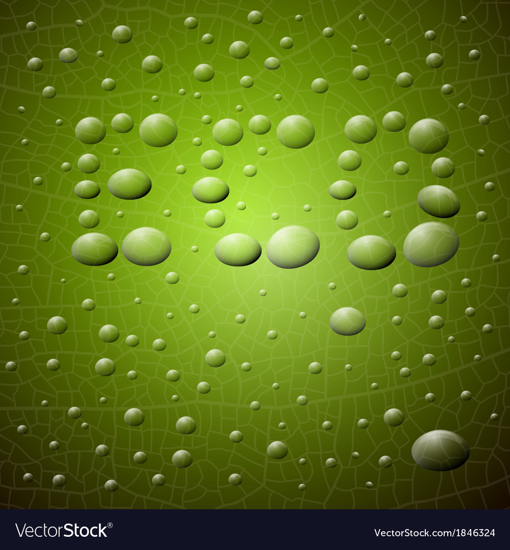 Abstract green background eco title made from vector | Price: 1 Credit (USD $1)
