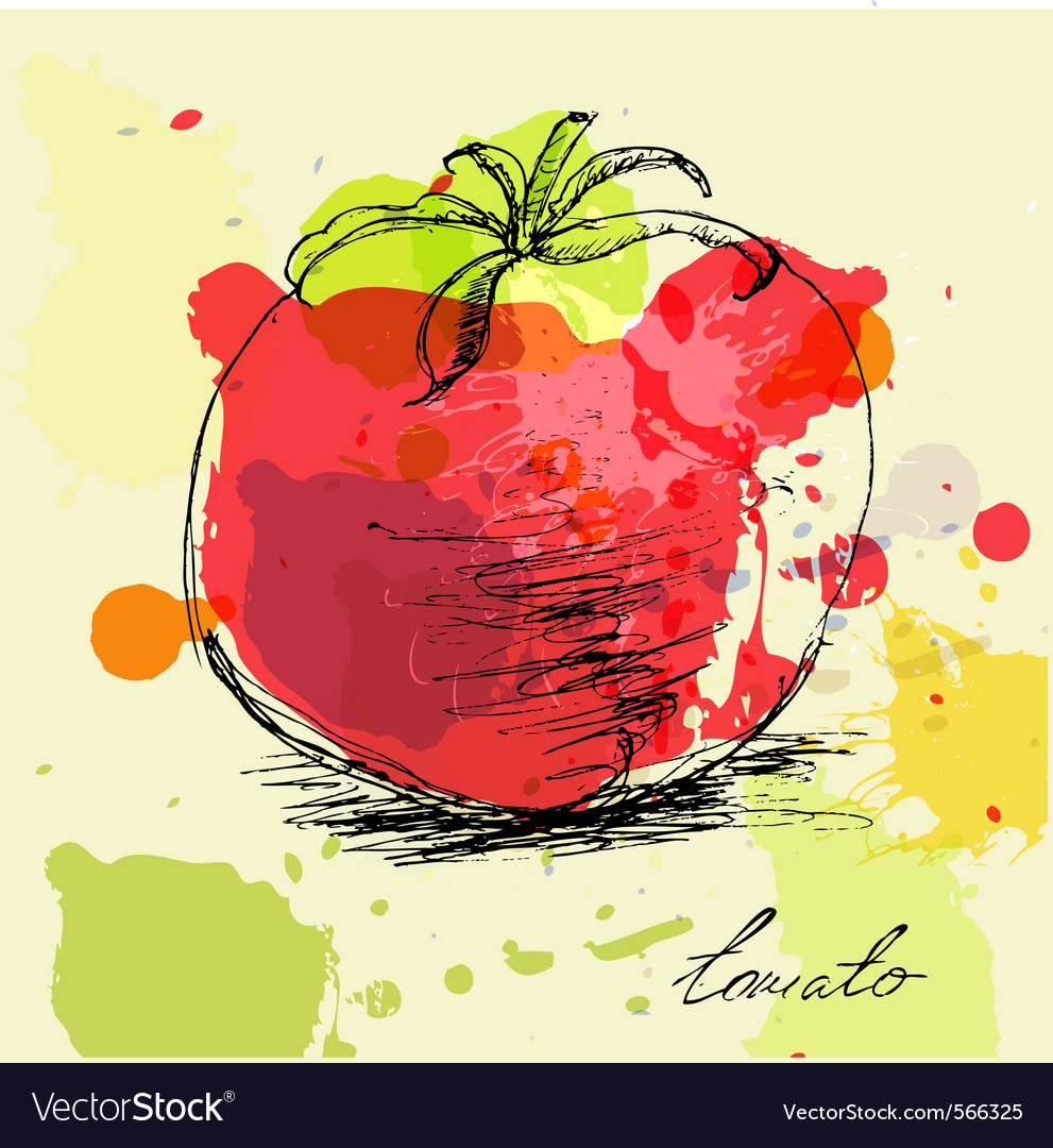 Stylized tomato vector | Price: 1 Credit (USD $1)