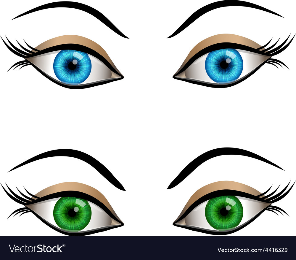 Blue and green female eyes vector   Price: 1 Credit (USD $1)