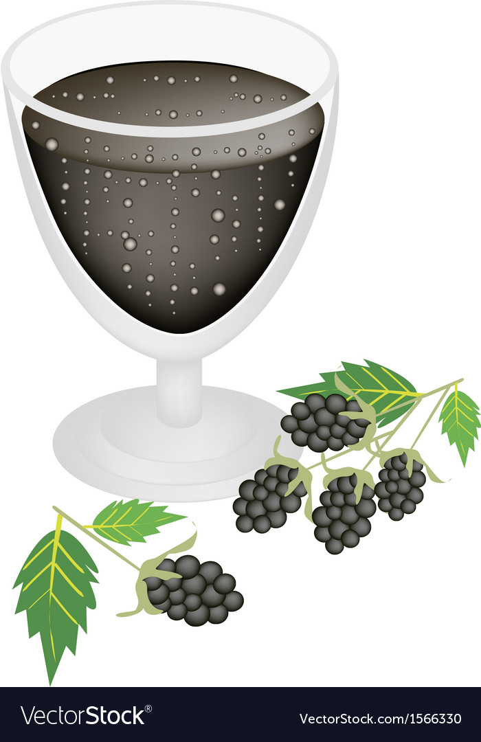 Blackberry juice in glass with blackberry fruit vector | Price: 1 Credit (USD $1)