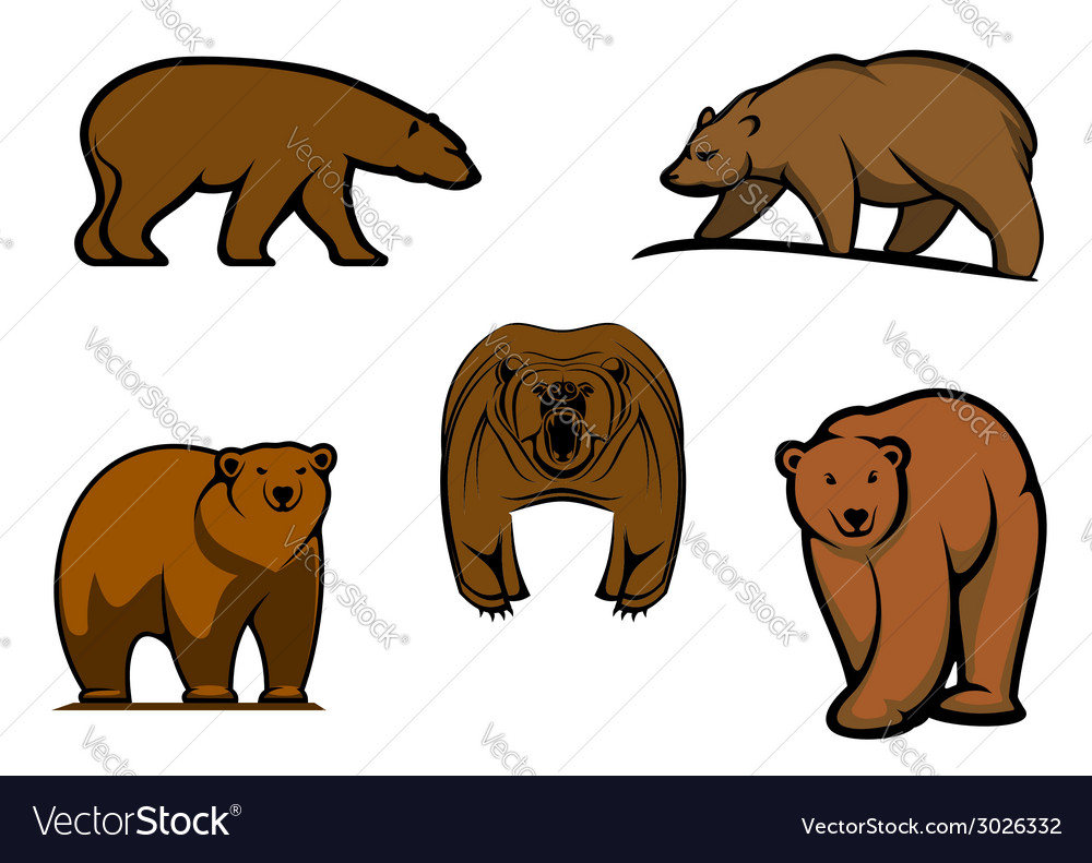 Brown wild bear characters vector | Price: 1 Credit (USD $1)