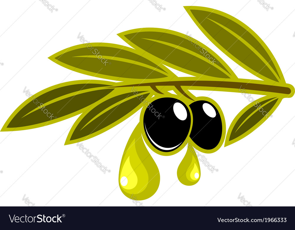 Olives on a leafy twig dripping oil vector | Price: 1 Credit (USD $1)