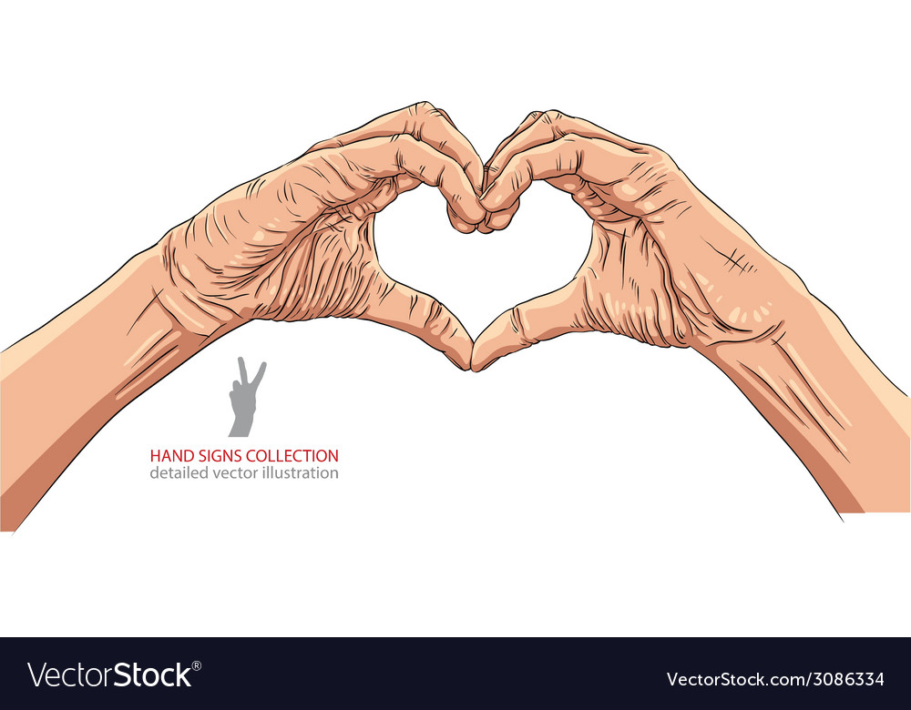 Hands in heart form detailed vector | Price: 1 Credit (USD $1)