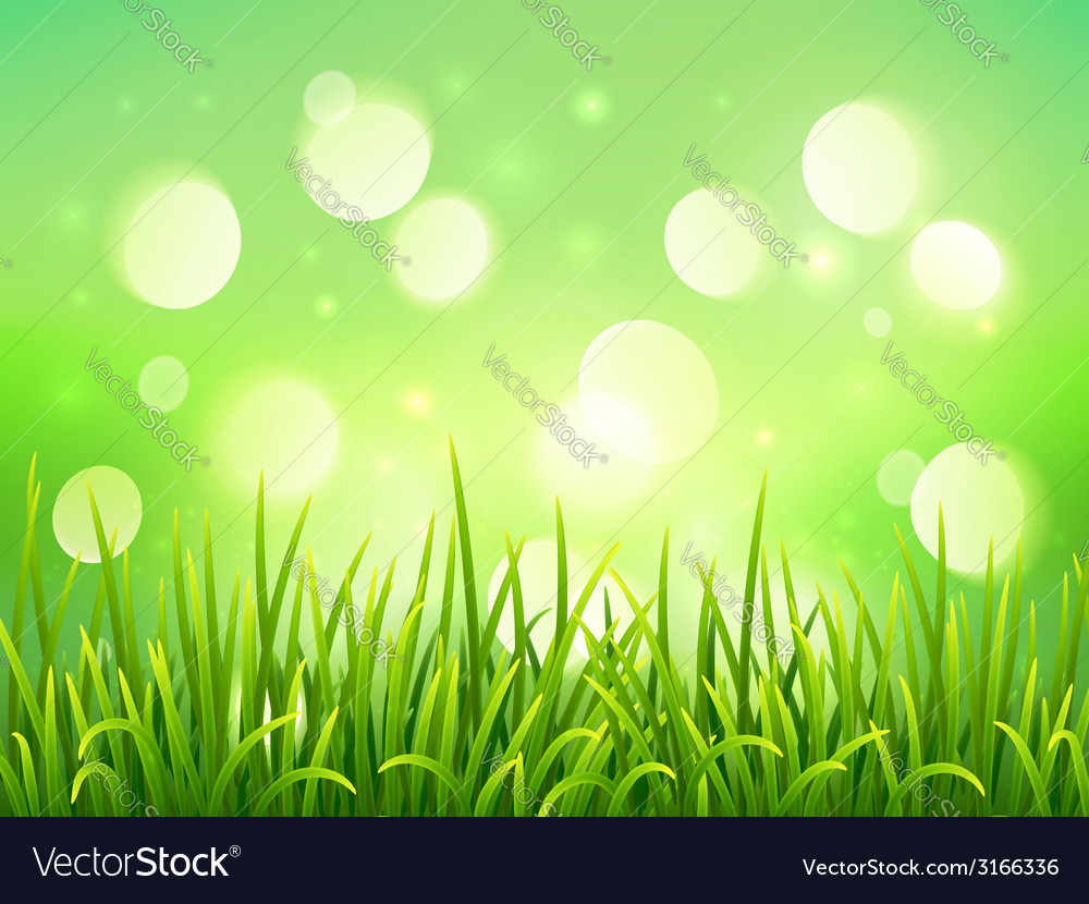 Green grass on bokeh light effect background vector | Price: 1 Credit (USD $1)