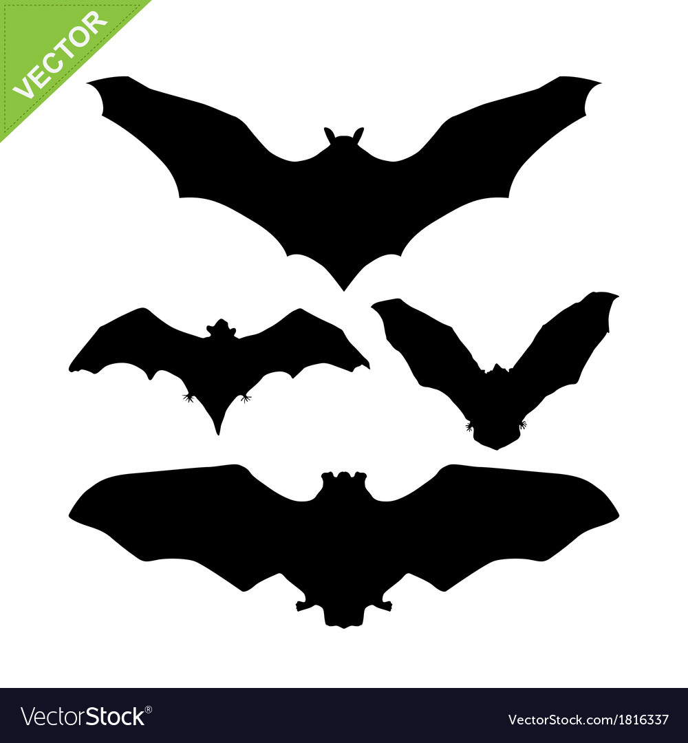 Bat silhouettes vector | Price: 1 Credit (USD $1)