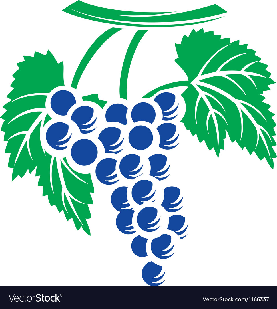 Grapes symbol vector | Price: 1 Credit (USD $1)