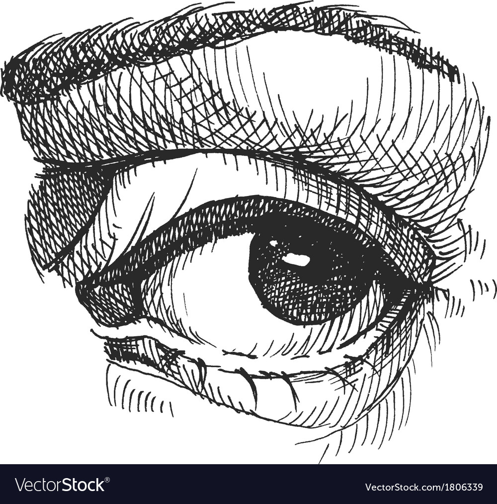 Eye realistic  hand drawn vector | Price: 1 Credit (USD $1)
