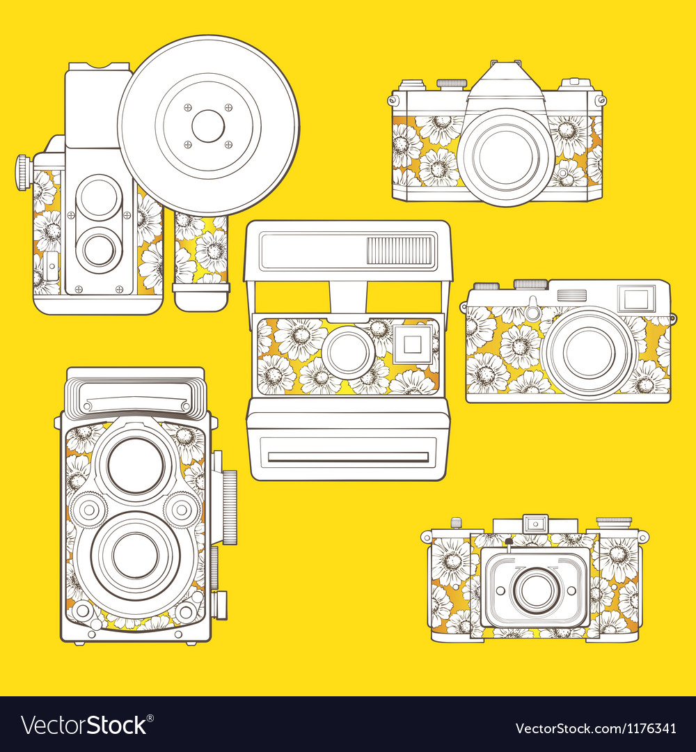 Vintage photo cameras set with floral pattern vector | Price: 3 Credit (USD $3)