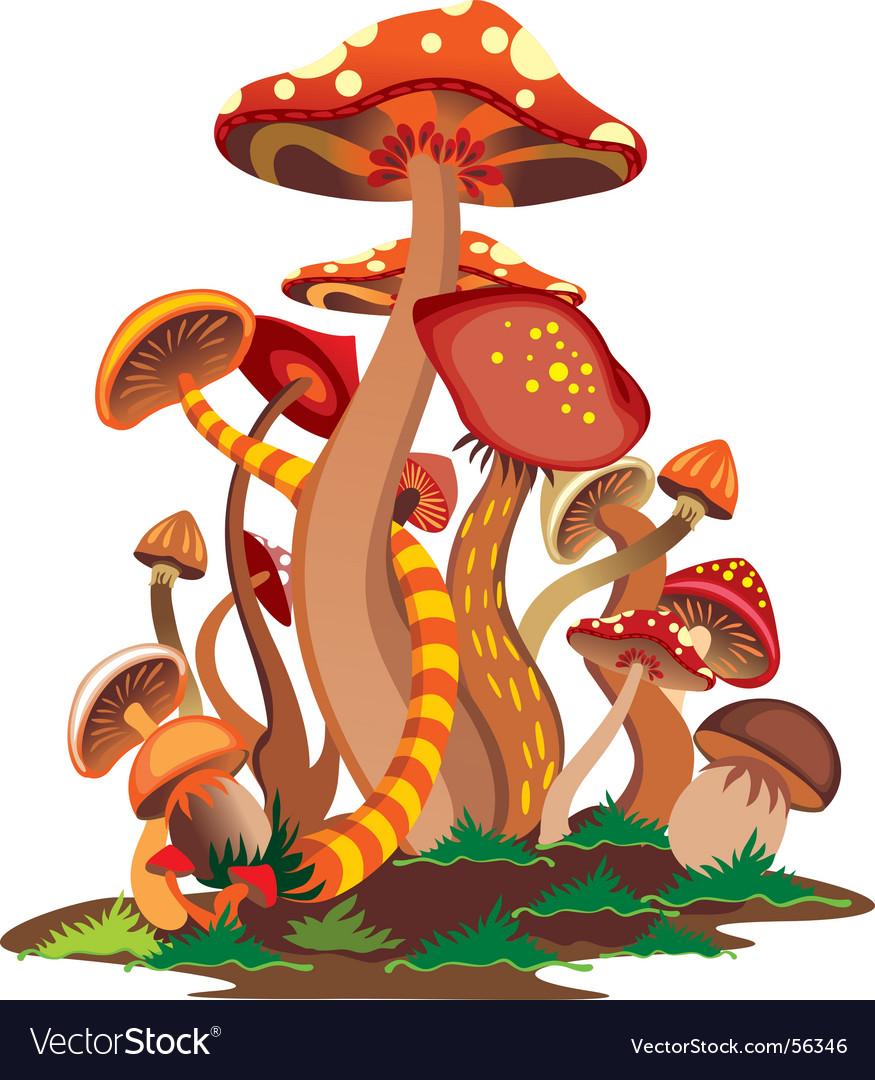 Mushrooms vector | Price: 1 Credit (USD $1)