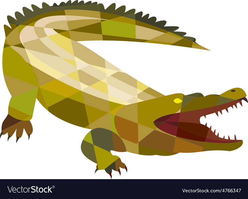 Alligator crocodile gaping mouth low polygon vector | Price: 1 Credit (USD $1)