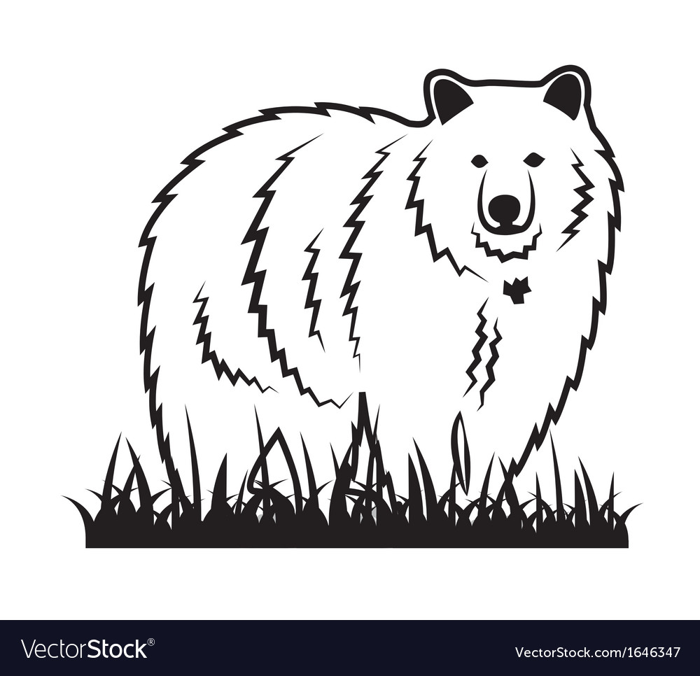 Bear on the grass vector | Price: 1 Credit (USD $1)