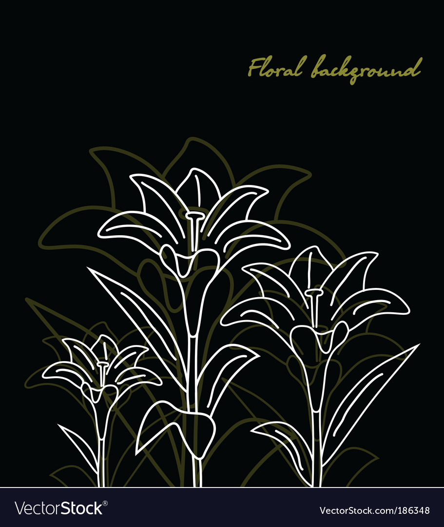 Floral background lily black vector | Price: 1 Credit (USD $1)